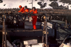 Le poisson séché, une méthode ancestrale. Seyðisfjörður 1980